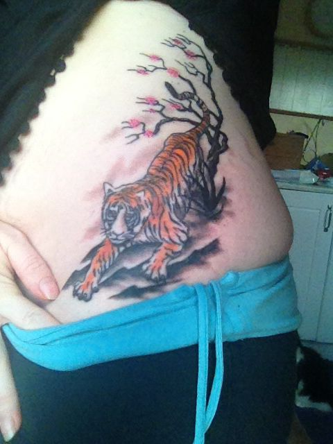 Custom design Tiger with cherry blossom tattoo by Tony at Opulent ink. From lower left ribcage to left hip.