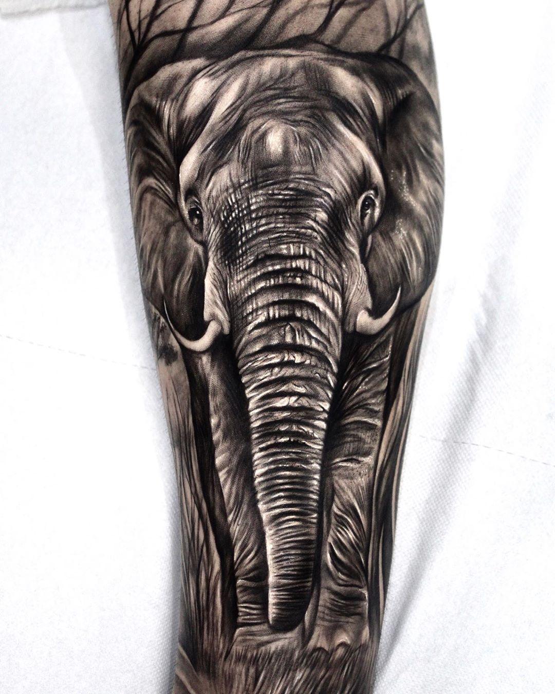 Elephant!! Full leg in progress! @cheyenne_tattooequipment @stencilstuff @cg.tattoostudio @dynamiccolor @hustlebutterdeluxe @100celletattoosupply #tattoo #tattoos #animaltattoo #portrait #familytattoo #elephant #elephanttattoo #savanatattoo #safari #safariphotography #realistictattoo #realistic #blackandgreytattoo #blackandgrey #realism #tattooroma #roma #cgtattoostudio