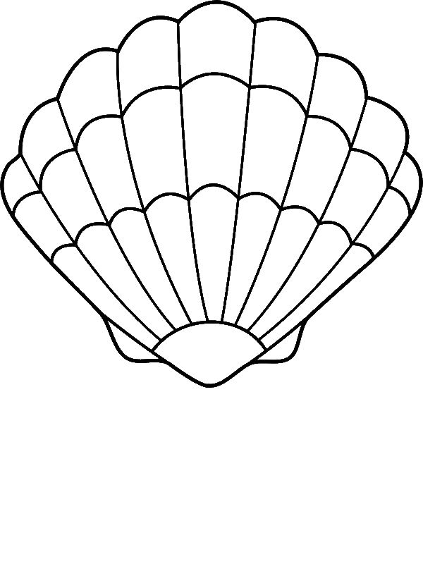 A Lovely Zigzag Scallop Seashell Drawing Coloring Page by