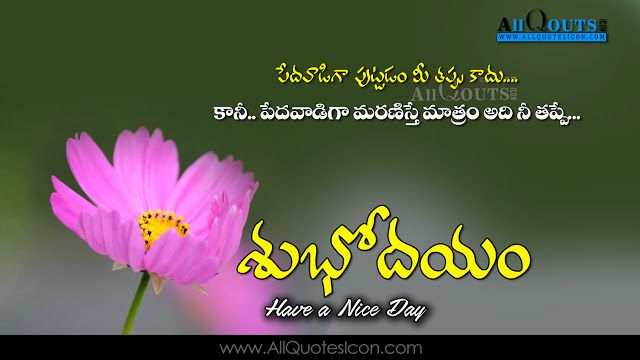 Telugu Good Morning Quotes Wshes For Whatsapp Life Facebook Images Inspirational Thoughts Saying Good Morning Greetings Good Morning Quotes Good Morning Images