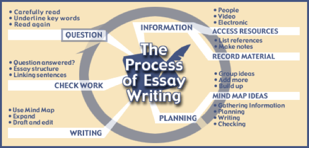 Cheap essay writer college essay format