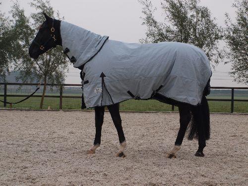 La Valencio 3 in 1 Blanket