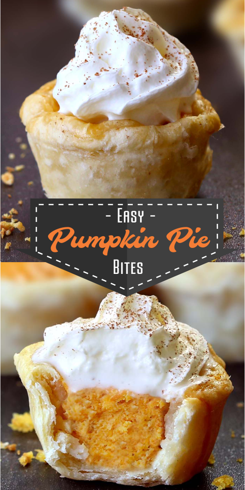 All the flavors of Homemade Pumpkin Pie packed into perfect portable fall desser…