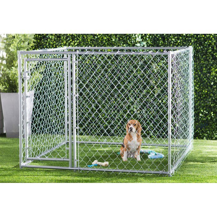 Abigail Steel Yard Kennel localdogkennels Dog kennel