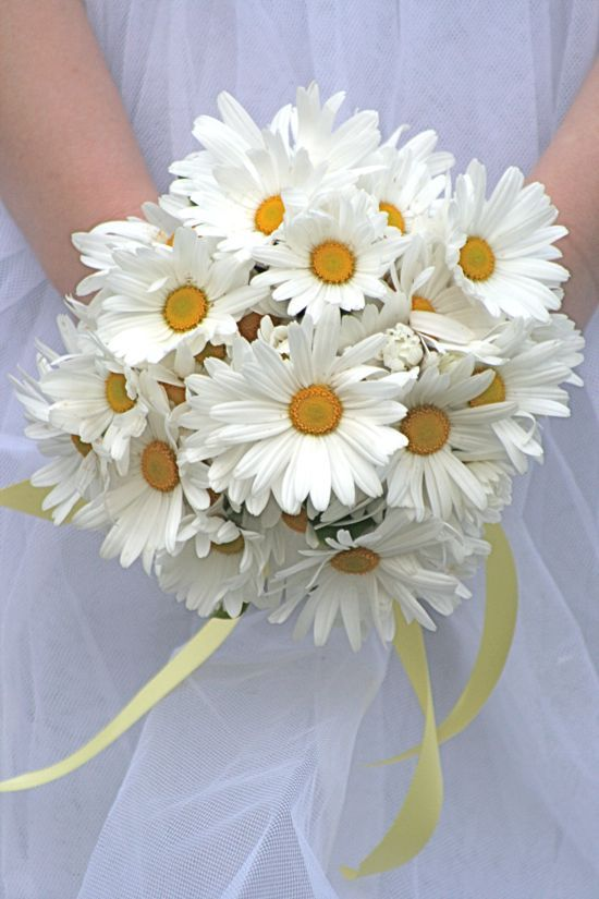 14 Beautiful Bridal Bouquets | Daisy wedding flowers, Daisy wedding ...