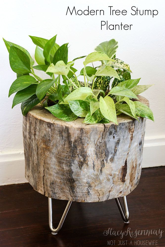 How To Make A Tree Stump Planter « Bombay Outdoors