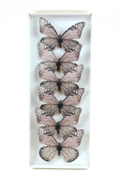 Scrapbooking - Farfalle con Clip Rosa Antico pz.6 - un prodotto unico di raffasupplies su DaWanda