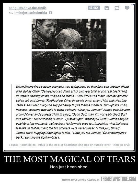 29 Times Tumblr Made Harry Potter Fans Cry All Over Again Harry Potter Facts Harry Potter Obsession Harry Potter Memes