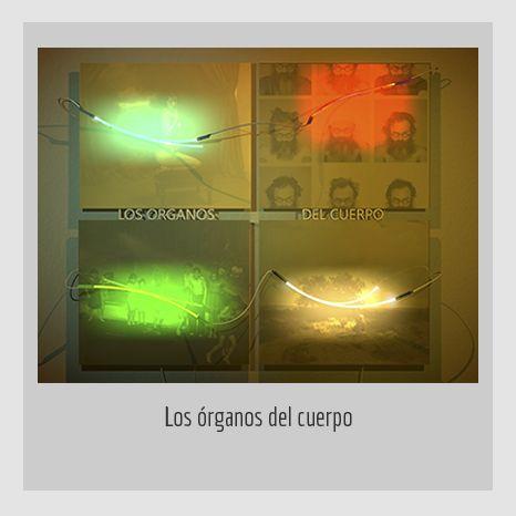 LOS ÓRGANOS DEL CUERPO.  YENY CASANUEVA Y ALEJANDRO GONZÁLEZ. PROYECTO PROCESUAL ART.