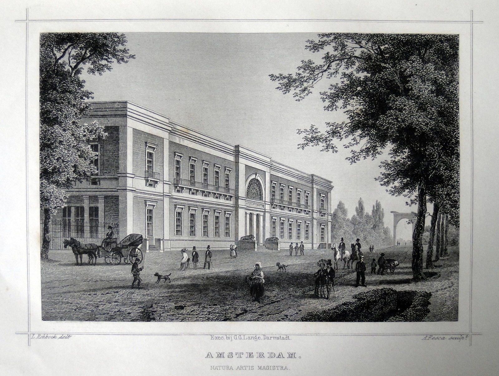 Amsterdam-Artis |Herkomst : J.L. Terwen - Het Koningrijk der Nederlanden, afm. 14 x 20 cm Staalgravure 1860