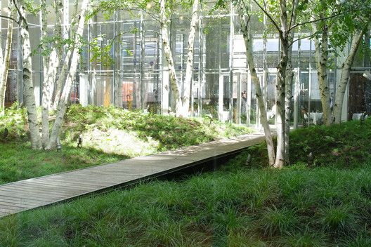 The New York Times Building Lobby Garden / HM White Site Architects + Cornelia Oberlander Architects | ArchDaily