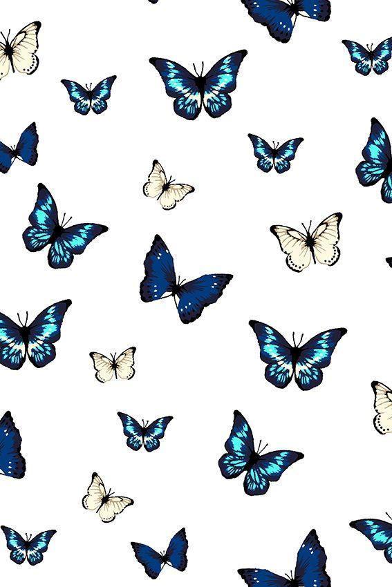 Les Papillons Embrace® Double Gauze Cotton Royal