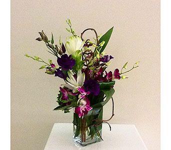 Orchid Surprise In Houston Tx River Oaks Flower House Inc Orchids Flower Delivery Fast Flowers