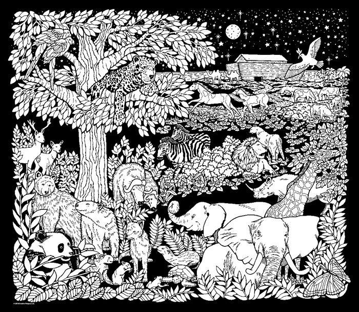 Noah's Night Sky - Velvet Coloring Poster Detailed Coloring Pages, Animal  Coloring Pages, Coloring Posters