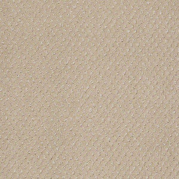 Lucky Roll Span Almond Span Pet Friendly Carpets Lucky Shaw Carpet