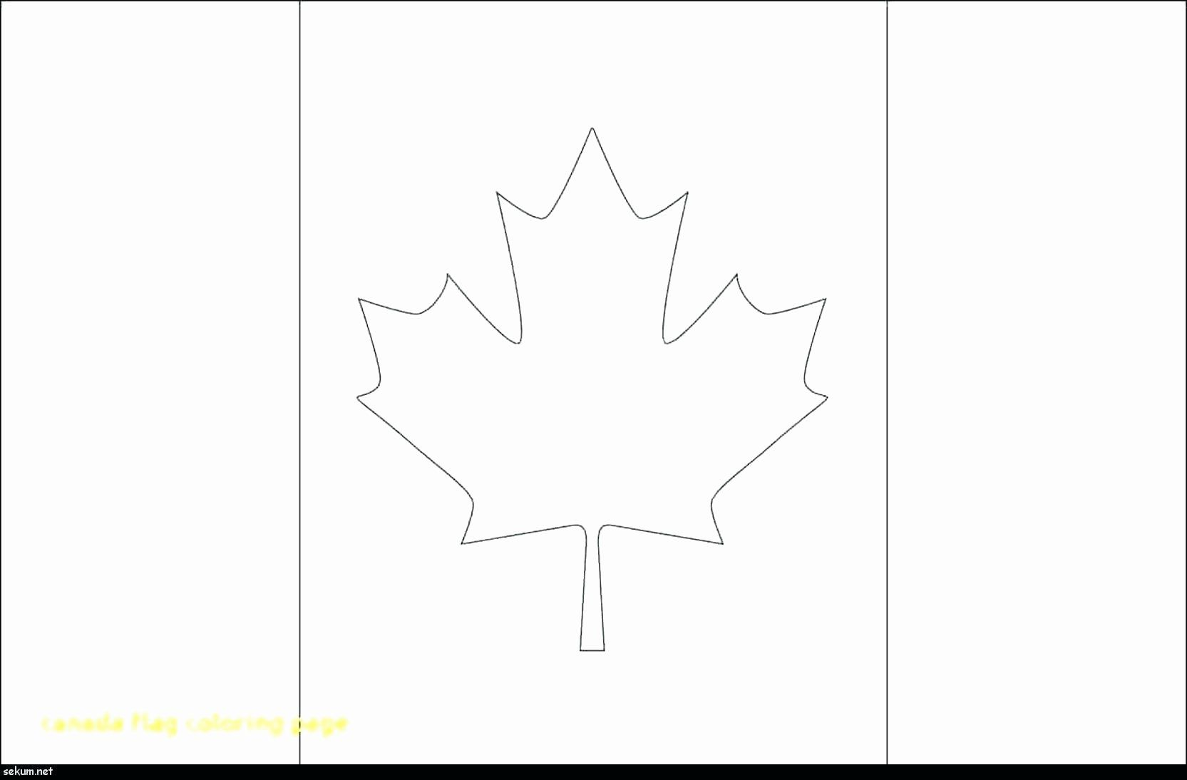 France Flag Coloring Sheet Unique Canada Flag Coloring Picture