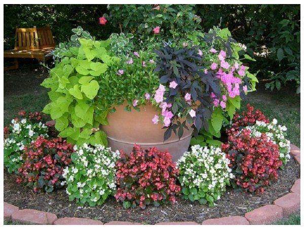 decoraciones de jardines con macetas modelos de fachadas