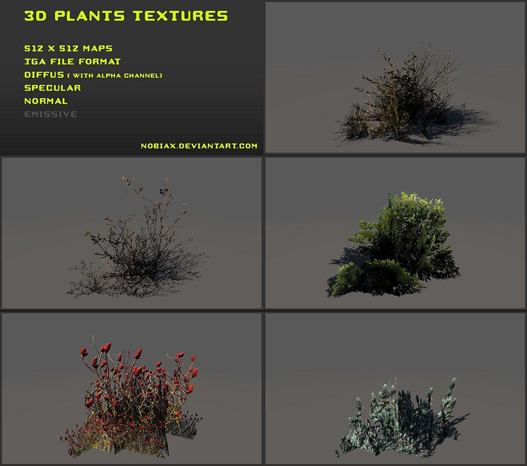 Free 3D plants textures 02 by Nobiax.deviantart.com on @DeviantArt