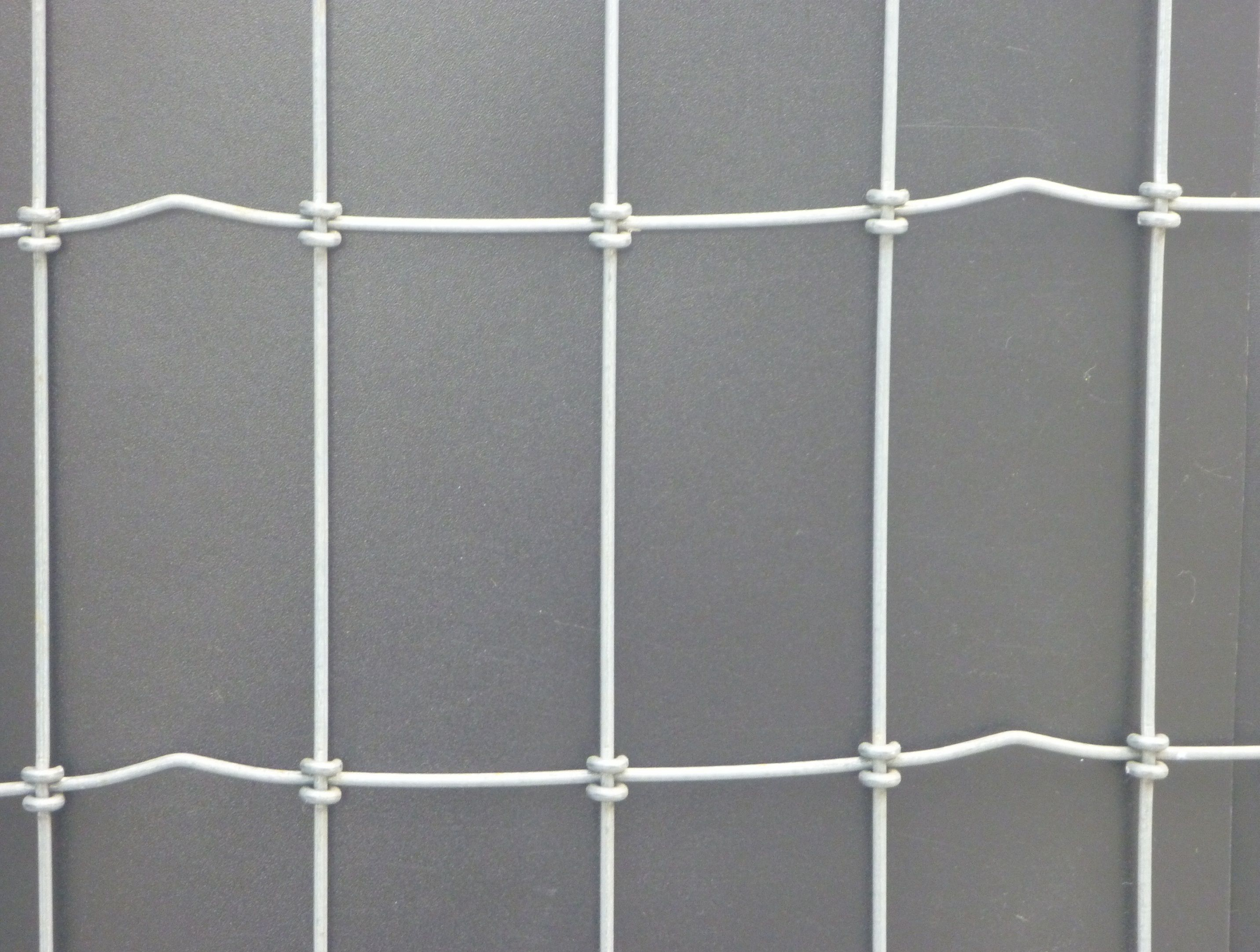 Dog Wire   Acreage Living   Pinterest   Dog fence, Wire mesh and Dog