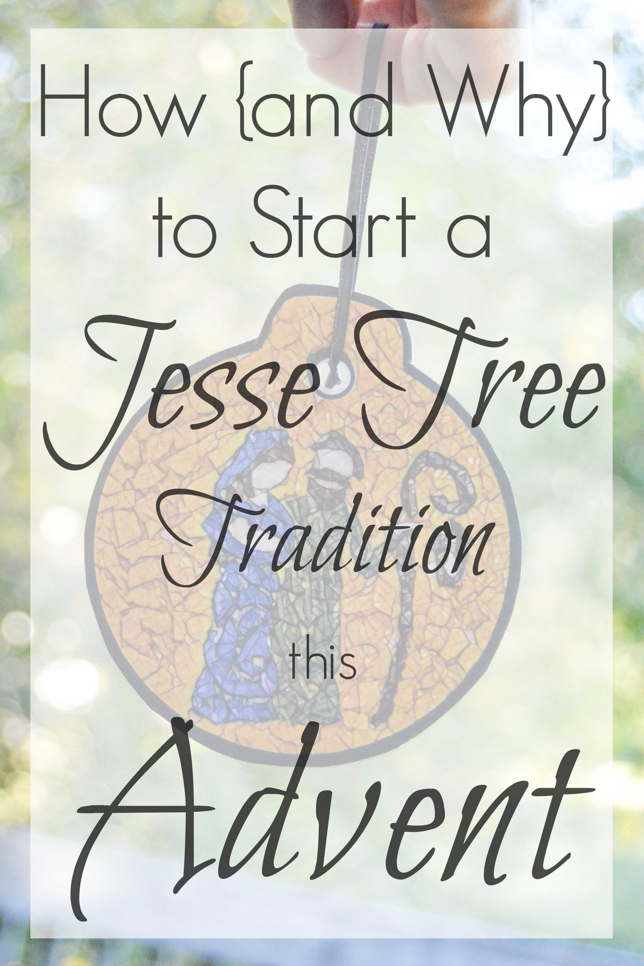 How And Why To Start A Jesse Tree Tradition This Advent