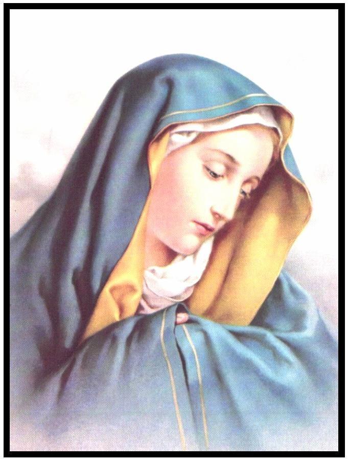 12 saint marys loses - 681×900