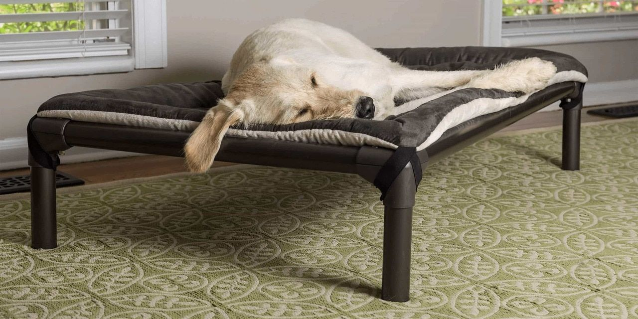 Kuranda Dog Beds® Chew Proof Dog Beds (With images