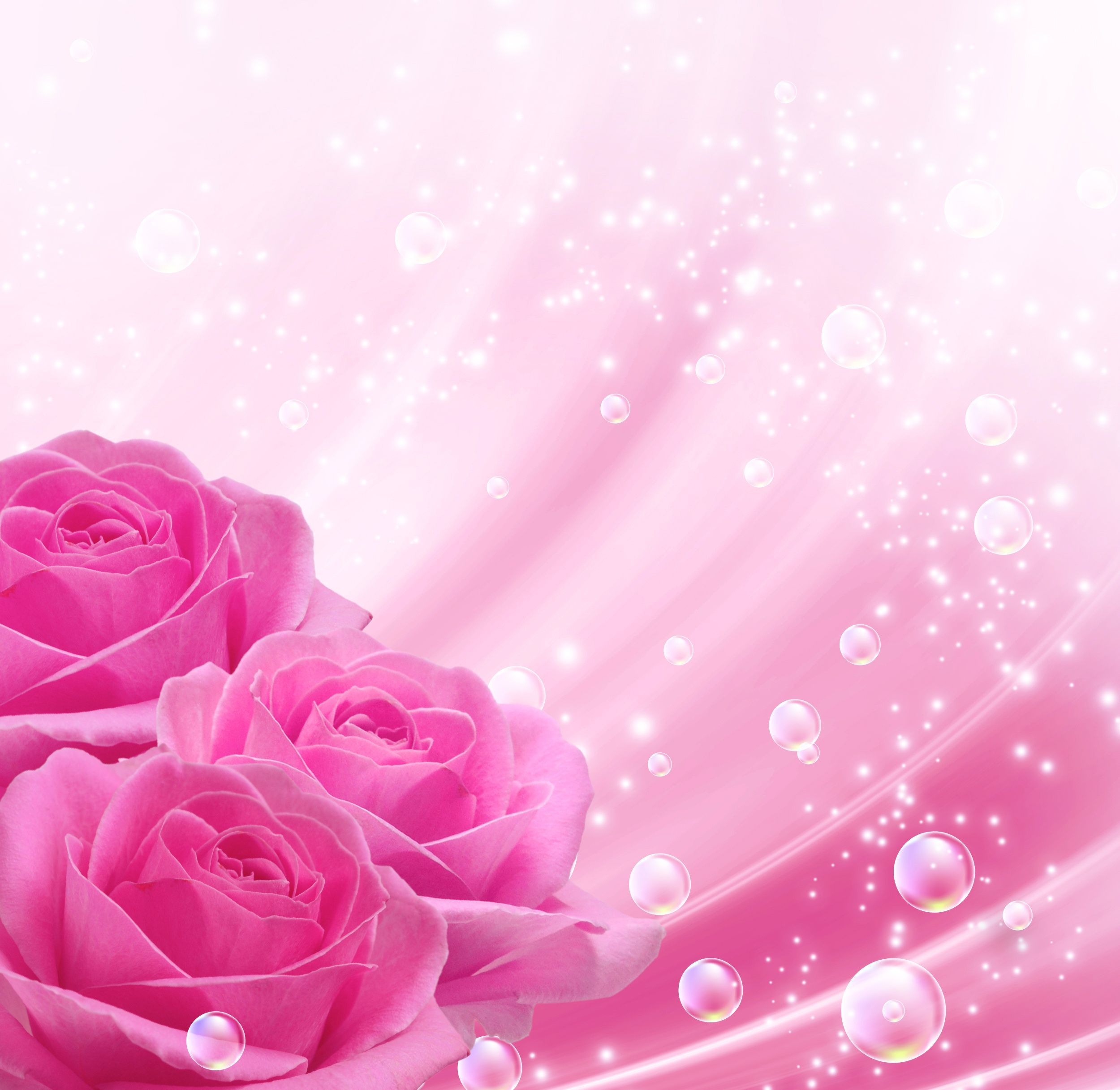 Pink Background With Pink Roses Gallery Yopriceville High