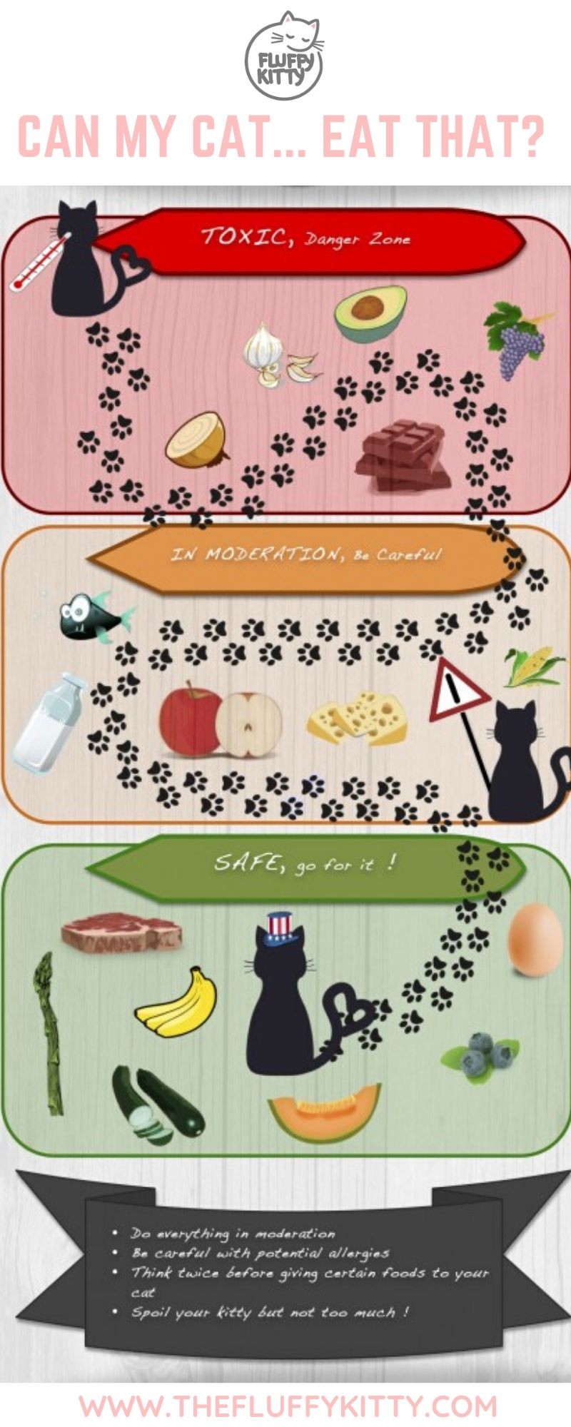 15 Human Foods Cats Cat And Cannot Eat Catfood Cats Infographic Catlovers Www Thefluffykitty Com The Fluffy Foods Cats Can Eat What Cats Can Eat Human Food