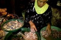 Harga Ikan Laut di Bengkulu Naik 160 Persen