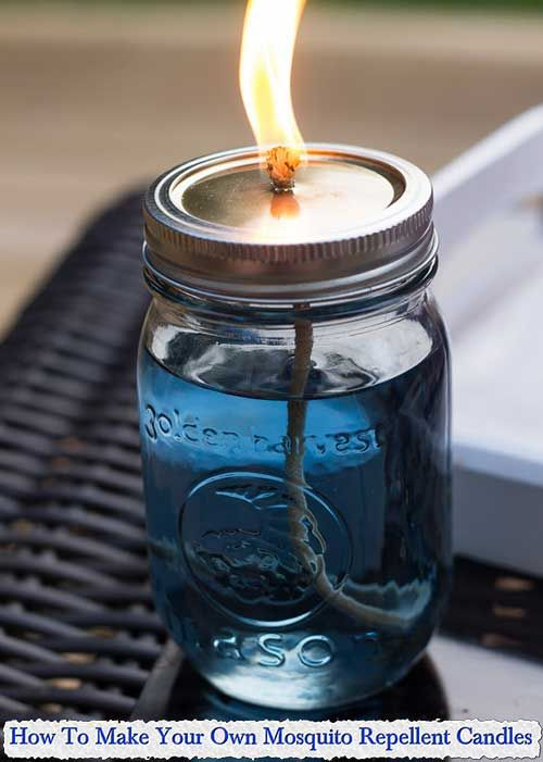How To Make Your Own Mosquito Repellent Candles How To