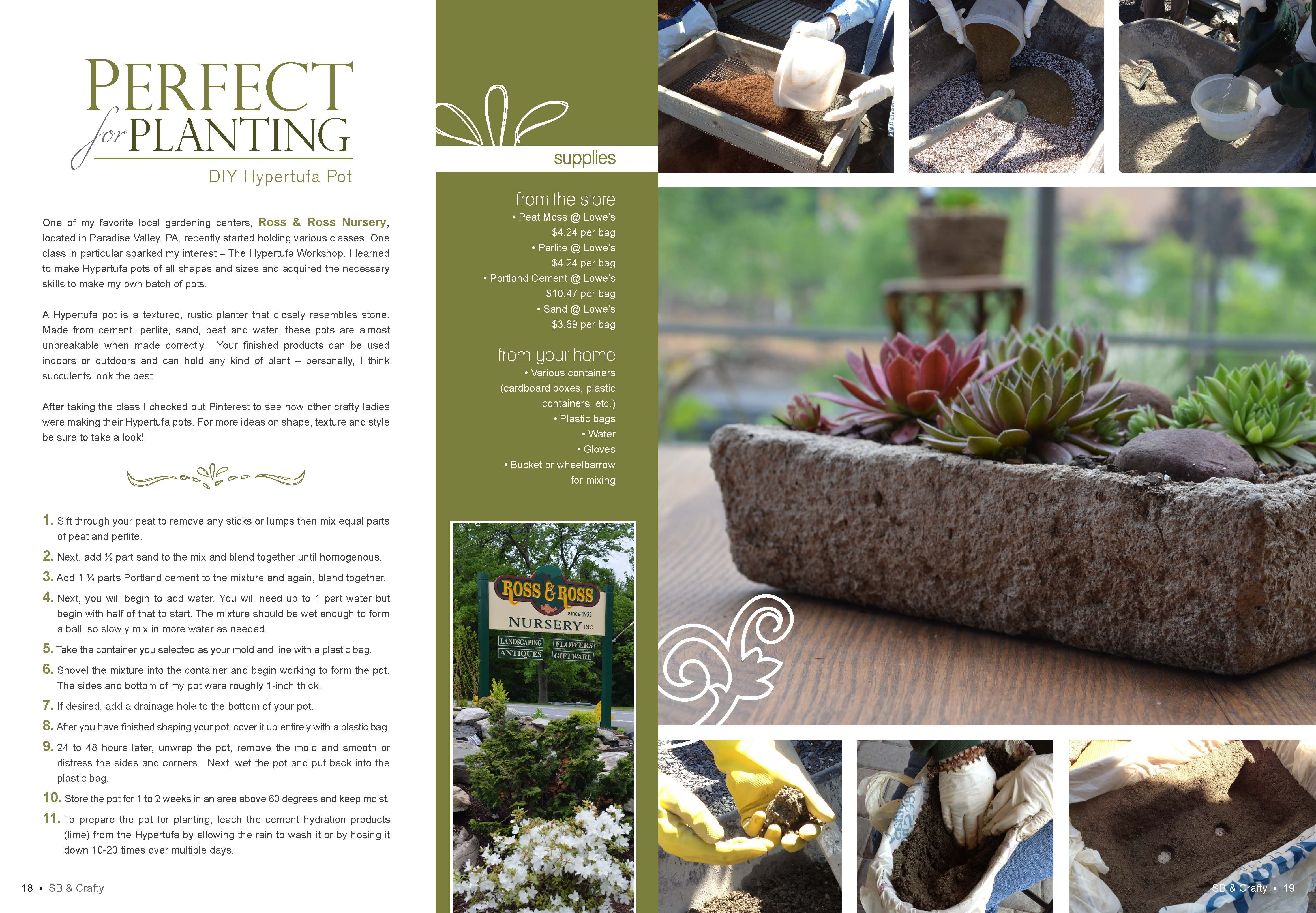 DIY Hypertufa Pot from the June/July 13 issue of Smart Blonde & Crafty Magazine. http://www.smartblondeandcrafty.com/diy-hypertufa-pot/