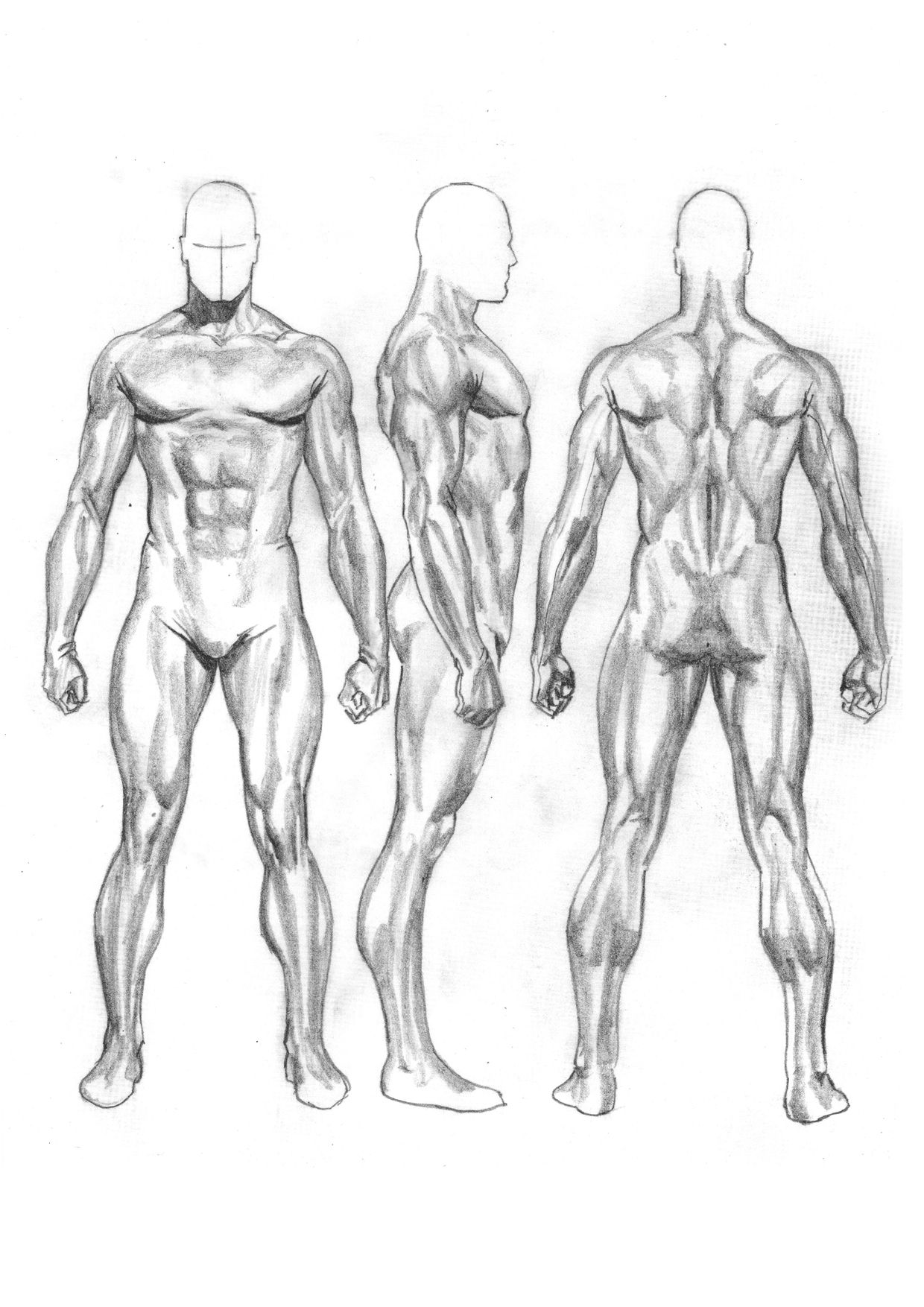 Alex Ross. Male Proportion | COMICS - ANATOMY | Pinterest | Anatomy ...