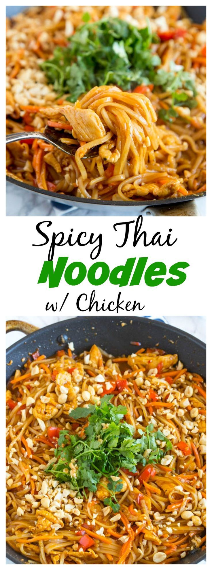 Spicy Thai Noodles with Chicken – a super quick and easy dinner that is on the table in minutes. Full of great Thai flavor with easy to find ingredients! #quickeasydinners