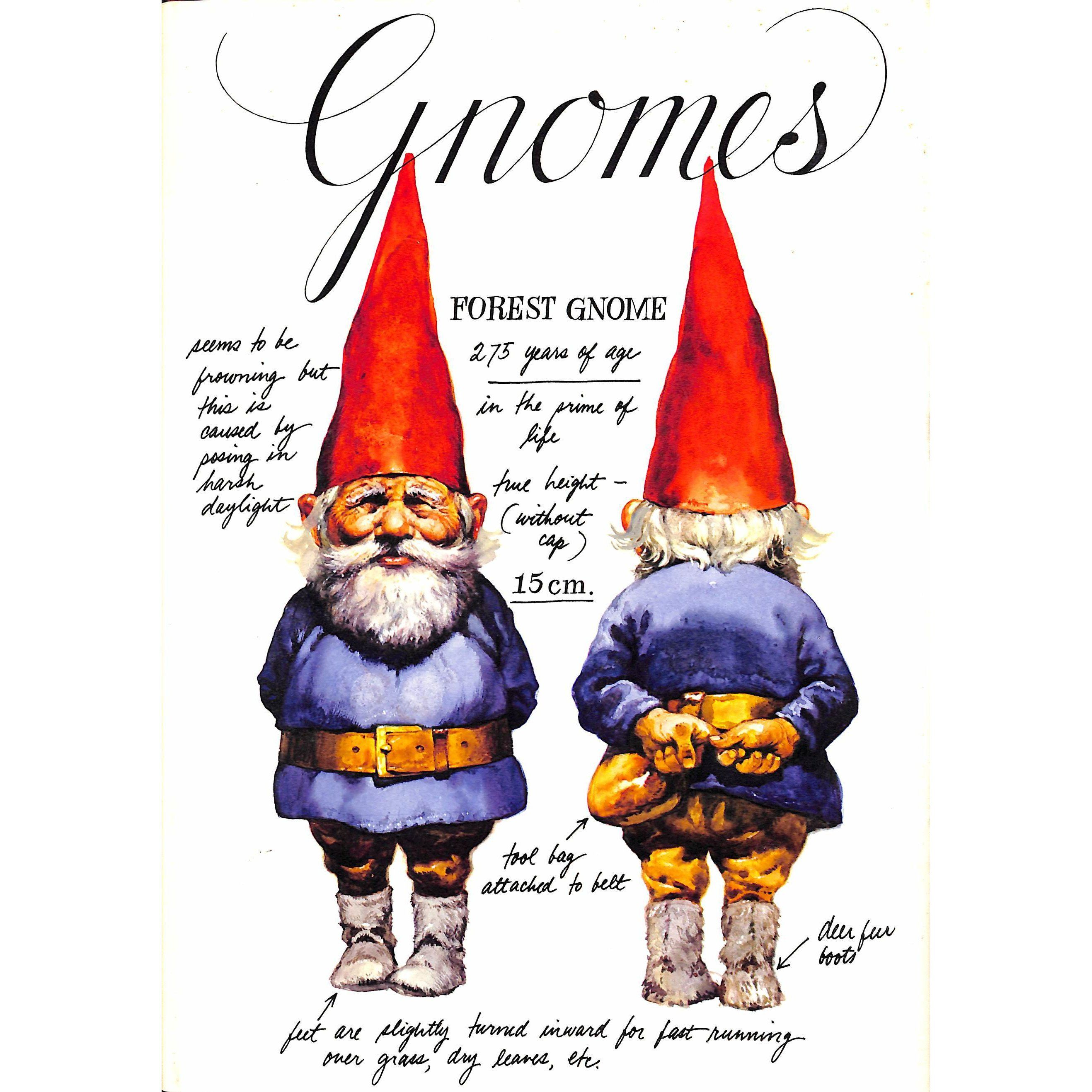 """Gnomes"" HUYGEN, Wil Gnomes book, Gnomes, Danish christmas"