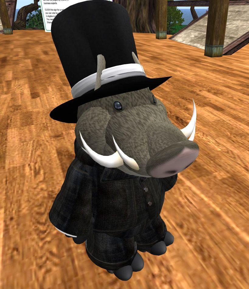 Mr. Warthog