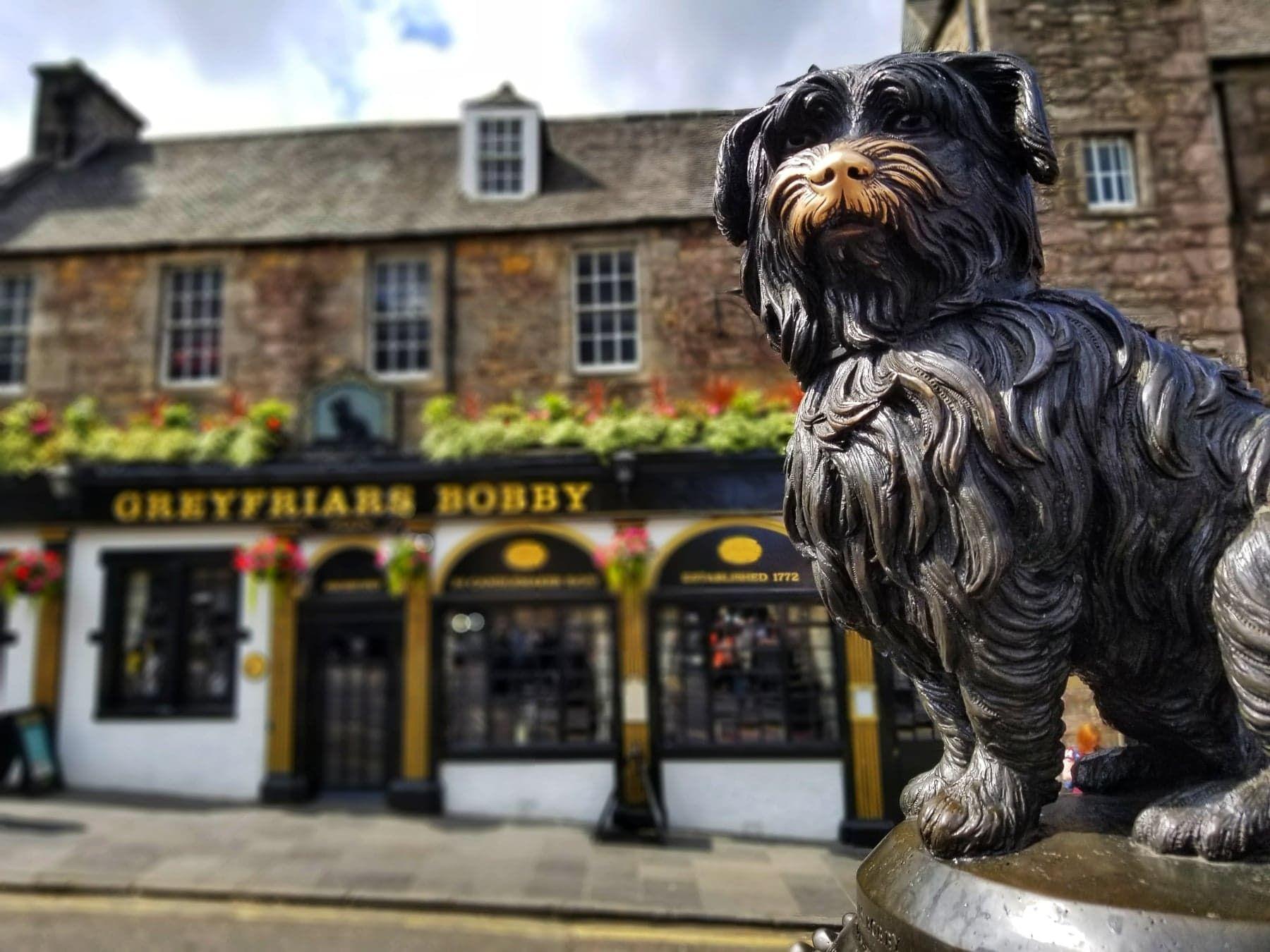 Places To Visit In Edinburgh Greyfriars Bobby Statue Edinburgh Travel Edinburgh Greyfriars Bobby