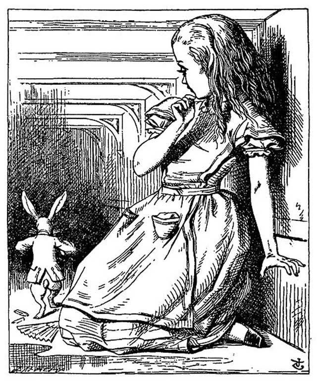 Resultado de imagem para livro Alice no País das maravilhas sinopse
