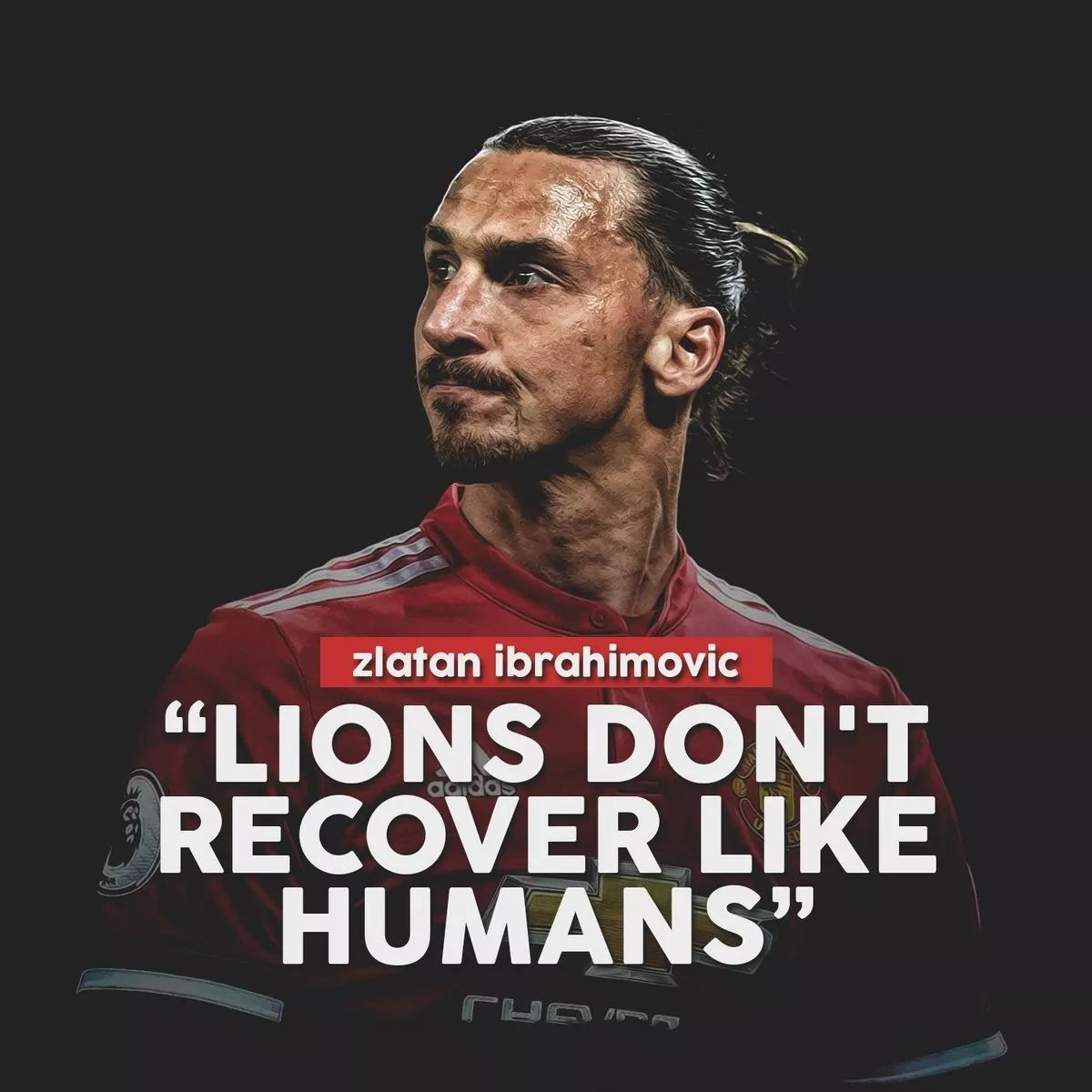 Pin by 黄涛 on Manchester United | Zlatan ibrahimović, Zlatan quotes, Quotes