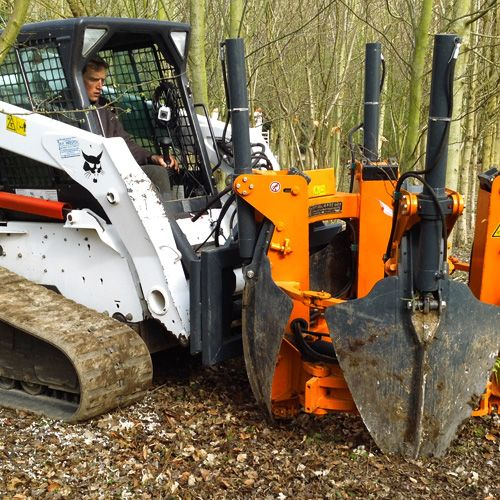Heritage Tree Services, Oxfordshire-based Aboriculturists ...