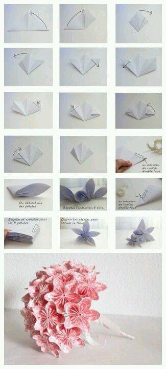 paper flowers제우스뱅크제우스뱅크제우스뱅크제우스뱅크제우스뱅크제우스뱅크제우스뱅크제우스뱅크제우스뱅크제우스뱅크제우스뱅크제우스뱅크제우스뱅크제우스뱅크제우스뱅크제우스뱅크제우스뱅크제우스뱅크제우스뱅크제우스뱅크제우스뱅크제우스뱅크제우스뱅크제우스뱅크제우스뱅크제우스뱅크제우스뱅크제우스뱅크