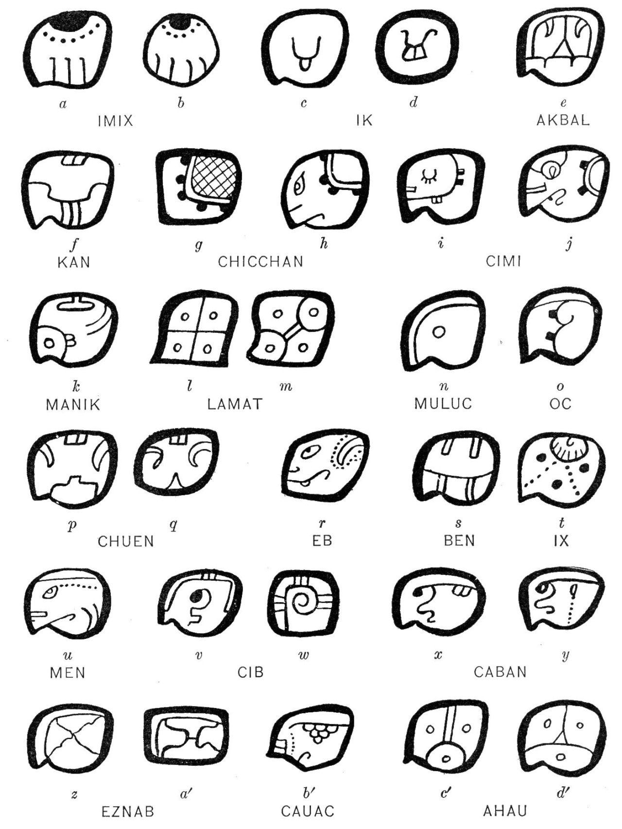 Maya Tzolk In 260 Day Calendar Glyphs From Codices