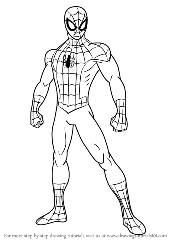 Learn How To Draw Ultimate Spider Man Ultimate Spider Man Step By Step Drawi In 2020 Spiderman Coloring Spiderman Art Sketch Spiderman Sketches