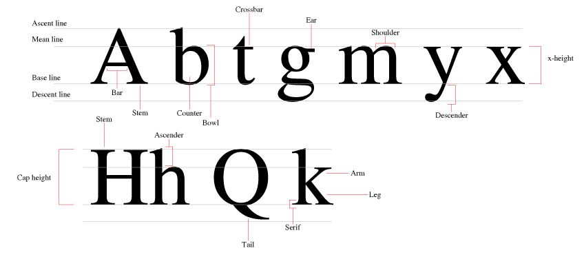 Anatomy Of A Letter Global Cities Pinterest Lettering Anatomy