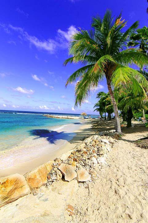 Half Moon Beach Jamaica So Ready For The Iconicweddings Beachwedding Www Halfmoon Rockresorts