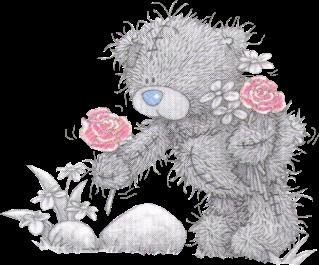 Teddy gris