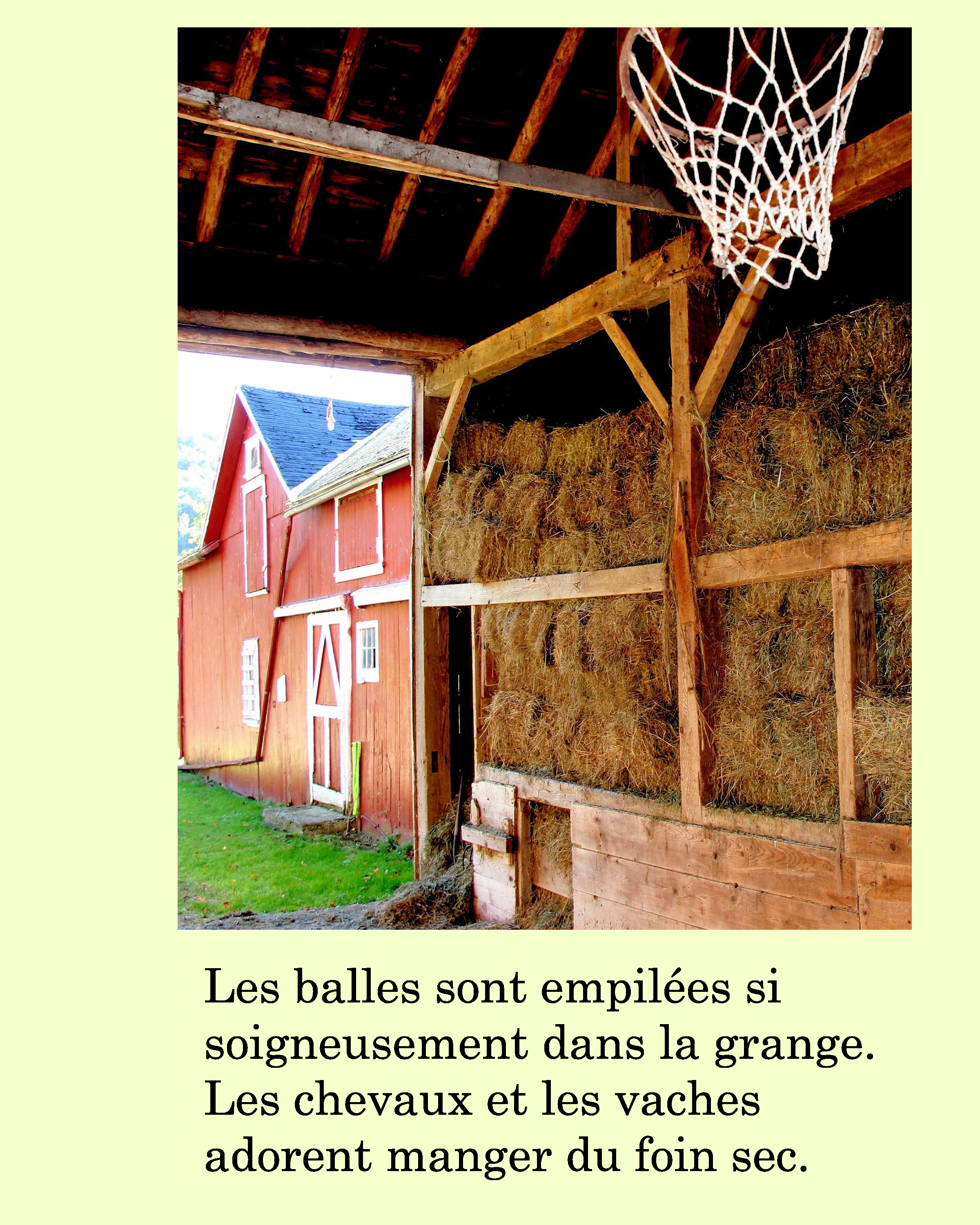 French Dog S Adventure On His Family Farm Ebook With
