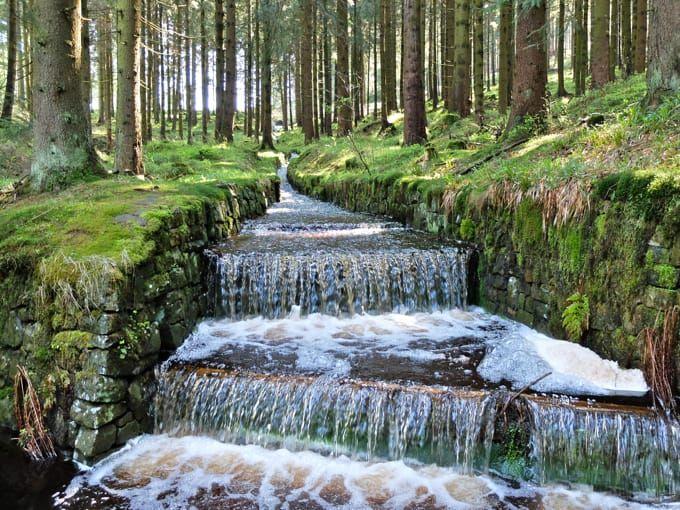 Photo of Hiking in the Harz Mountains: To the Wolfswarte near Altenau