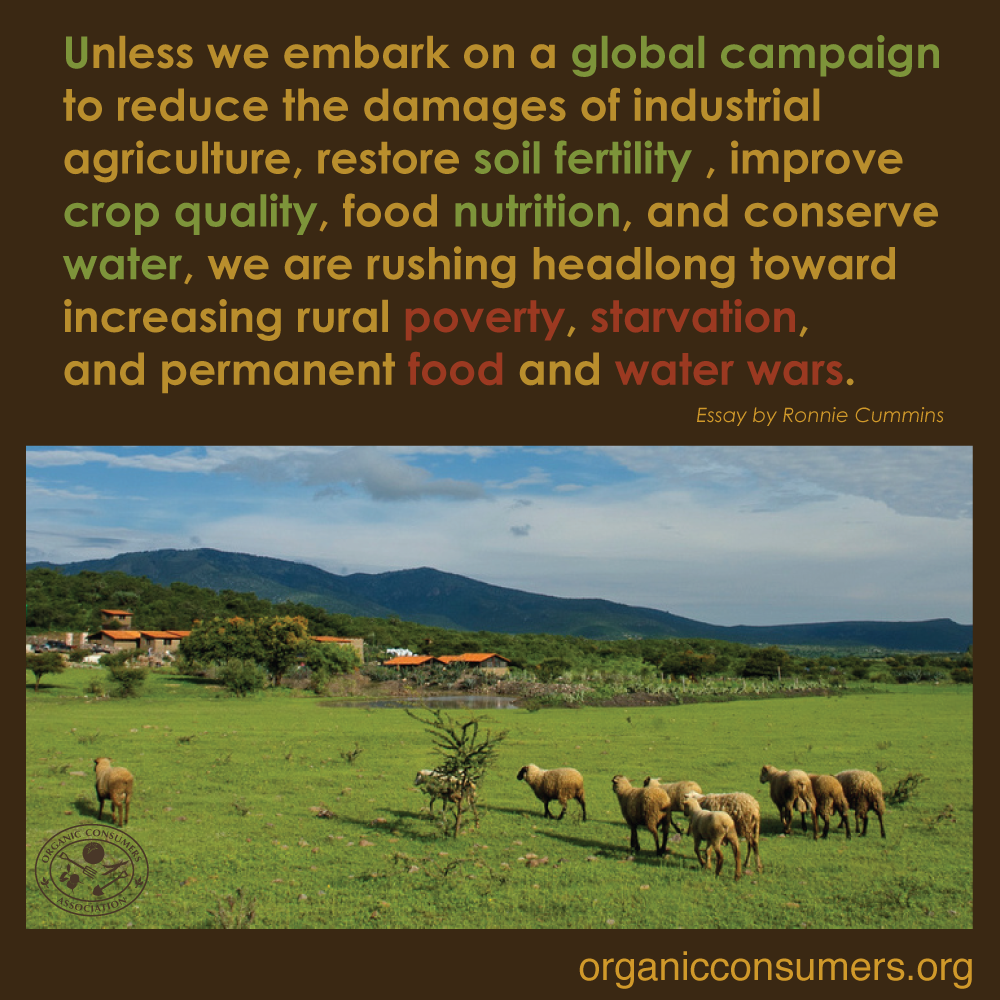 We can reverse (not just mitigate) global warming. And while we're at it, we can also restore soil fertility, eliminate rural poverty and hunger. Find out how here: http://orgcns.org/1A93FvB