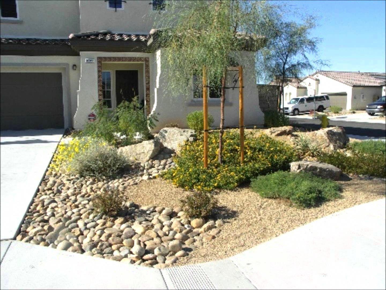 Large backyard landscape ideas on a budget dessert desert landscaping good idea beginnerlandscapingideas