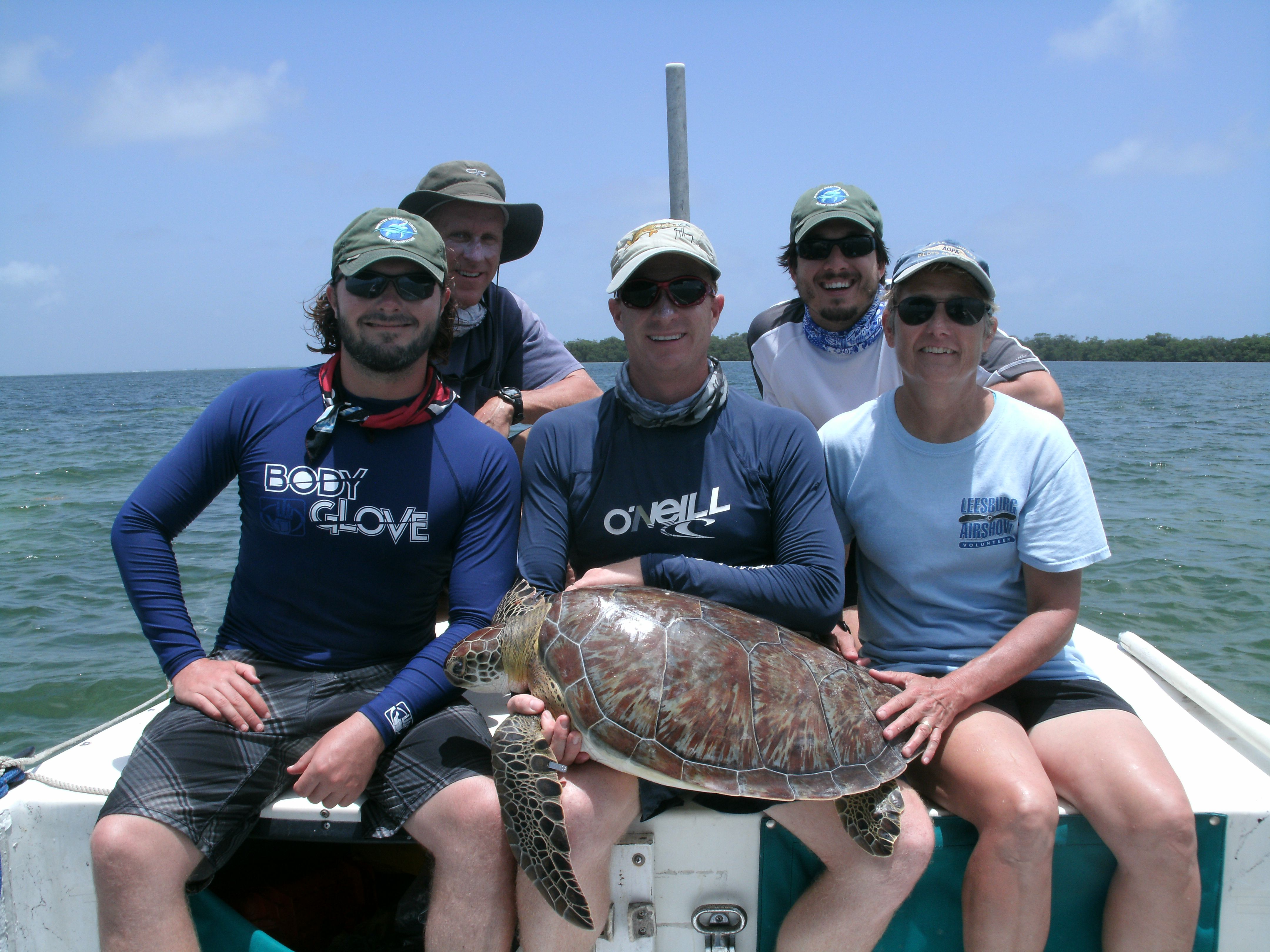 Biologists pose with a turtle they were able to capture, tag and release.